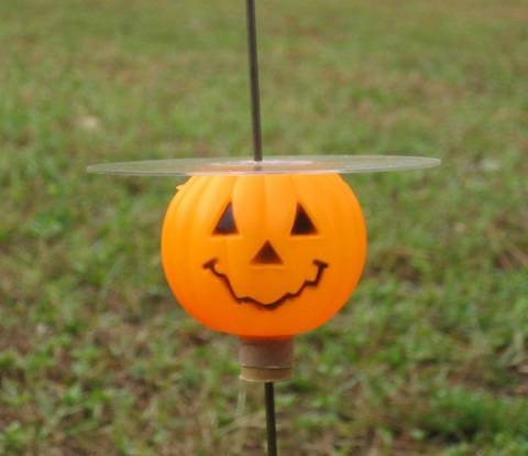Mr. Pumpkin CD Rocket uses a plastic pumpkin from Michaels and  the Clear CD Cover.  18mm motor tube.
